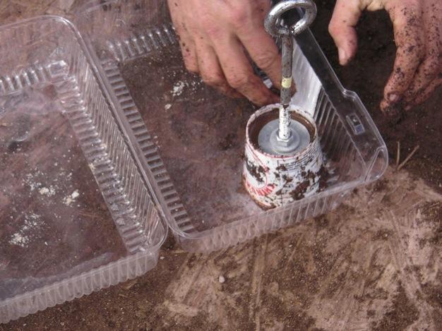 semilleros-de-tierra-10