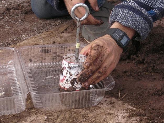 C mo hacer f ciles semilleros de tierra - Tierra para semilleros ...