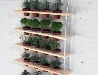 imagen Un jardín vertical de hierbas aromáticas