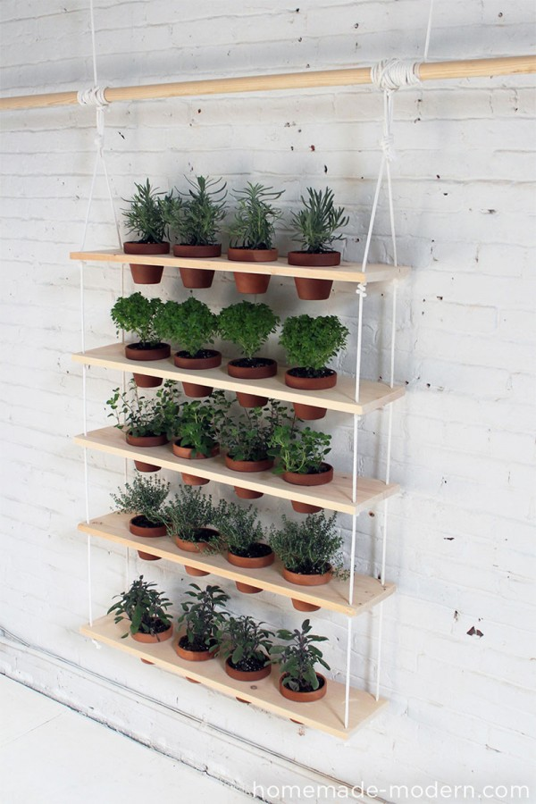 Un jard n vertical de hierbas arom ticas - Plantas aromaticas jardin ...