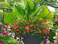 imagen Fundamentos de diseño para las macetas de jardín