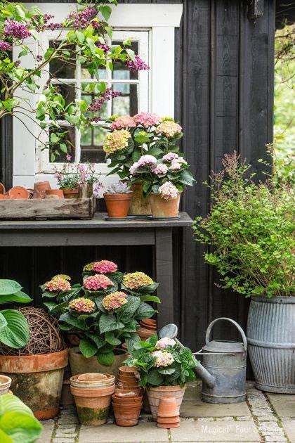 Rincones para jardinería 3