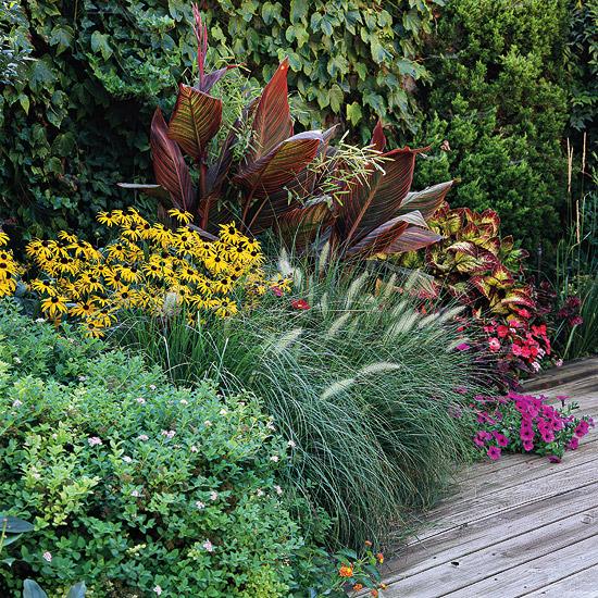 15-usos-de-la-hierba-ornamental-07