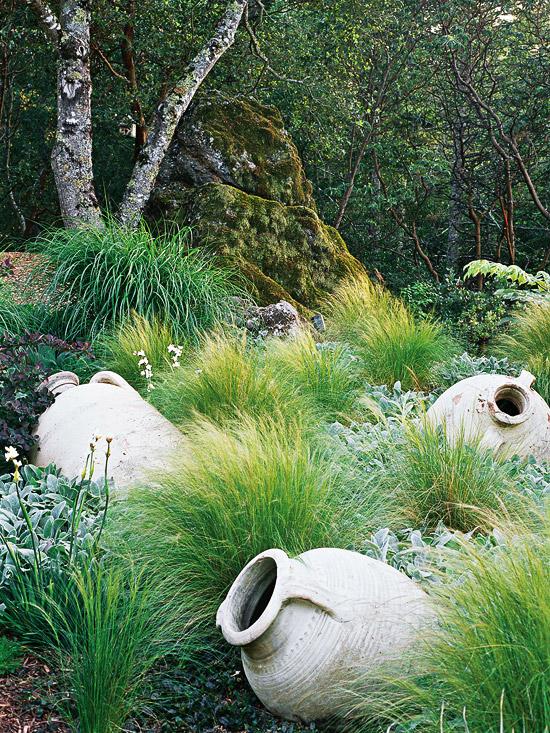 15-usos-de-la-hierba-ornamental-10
