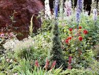 imagen Cómo crear un jardín rústico en 6 pasos