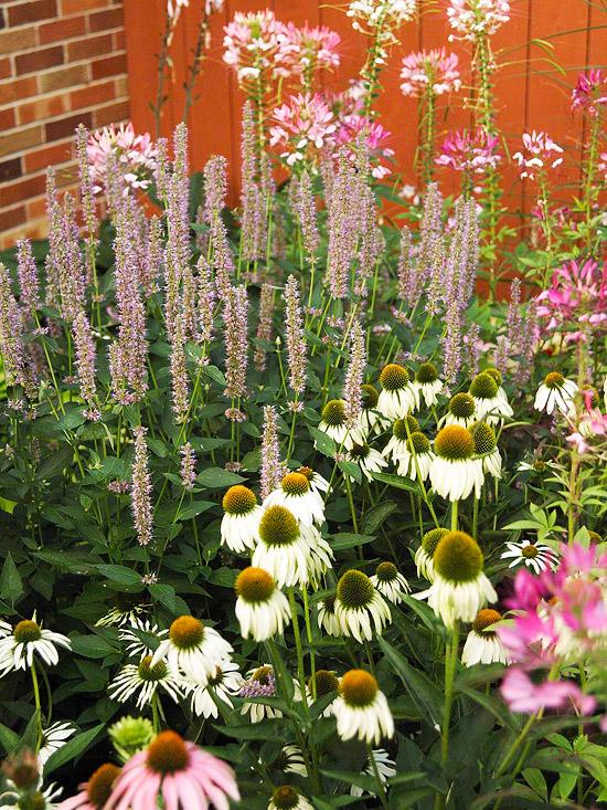 como-crear-un-jardin-rustico-en-6-pasos-02