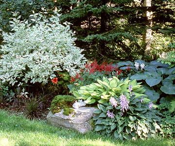 como-crear-un-jardin-rustico-en-6-pasos-03