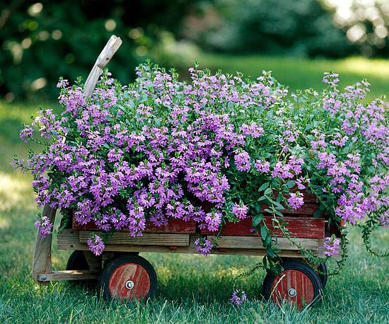 como-crear-un-jardin-rustico-en-6-pasos-04