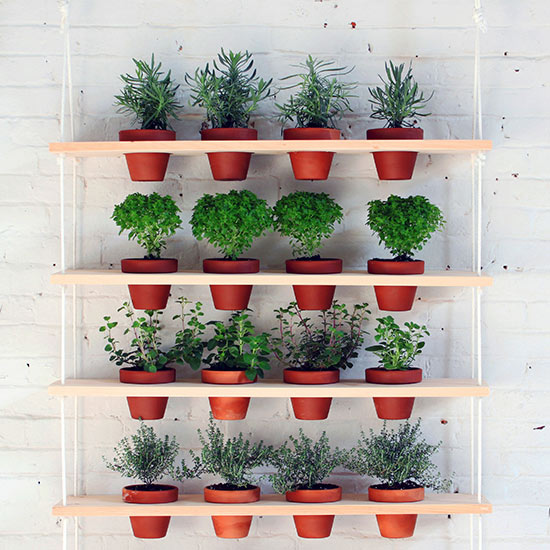 Ideas para montar un jard n vertical for Ideas de jardines verticales
