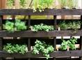 imagen Ideas para montar un jardín vertical