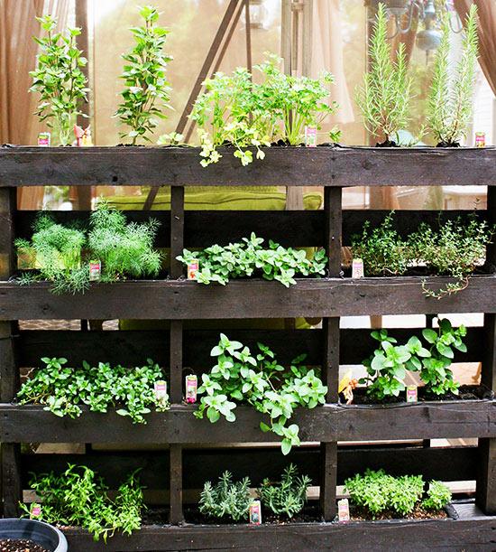 ideas-para-montar-un-jardin-vertical-04