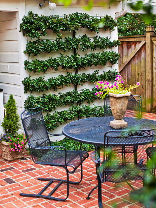 15 ideas econ micas para decorar tu patio for Como decorar un arbol en el jardin