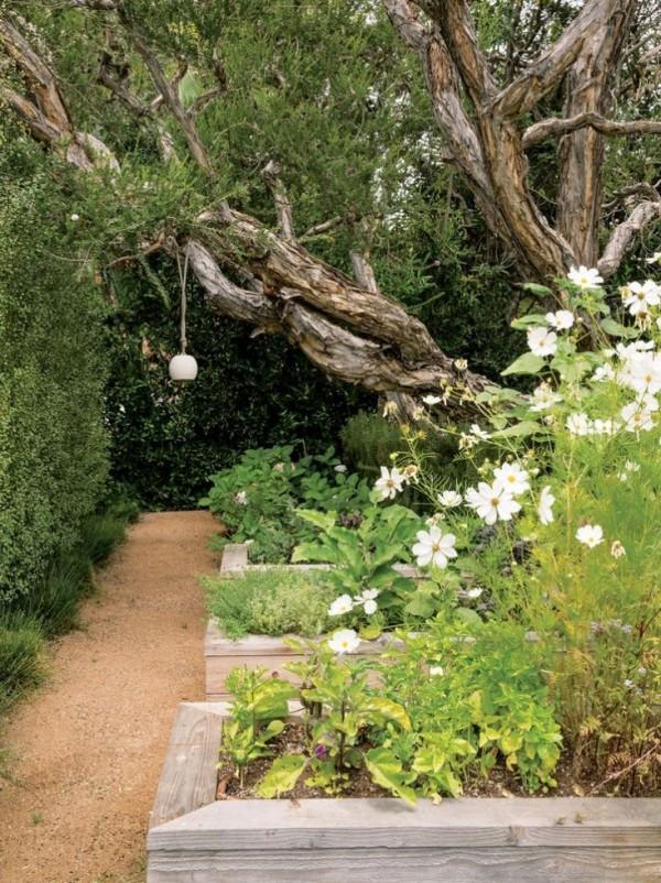 usos-del-granito-triturado-en-jardineria-05