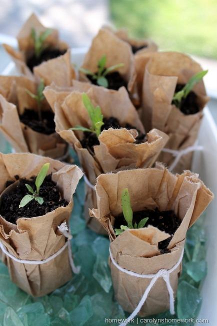 10-semilleros-reciclados-04