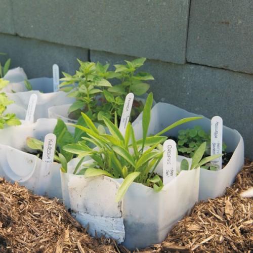 10-semilleros-reciclados-10