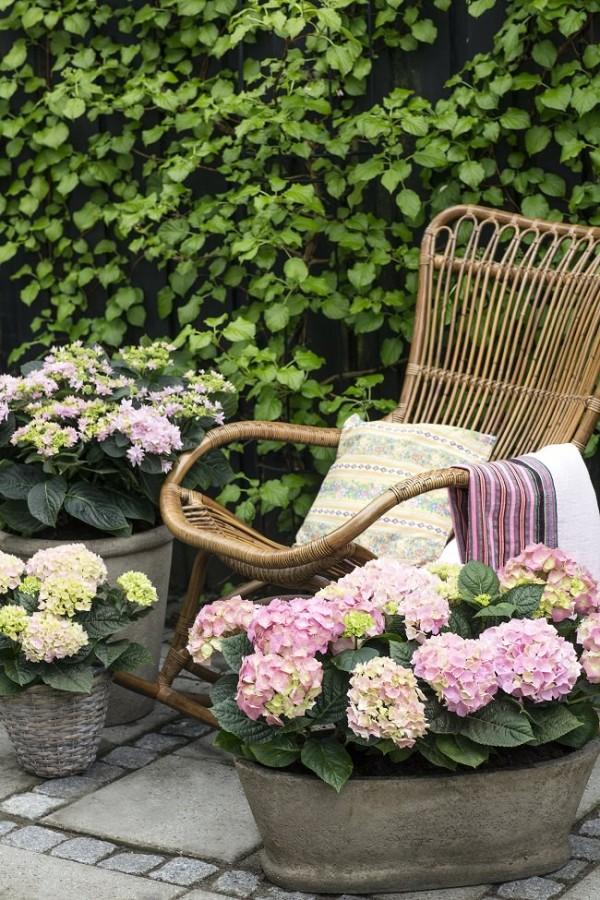 15-ideas-de-paisajismo-con-hortensias-06