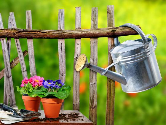 5-consejos-para-comenzar-un-jardin-con-macetas-01