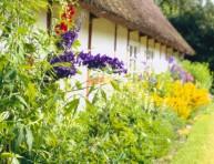 imagen Algunos consejos para crear un jardín