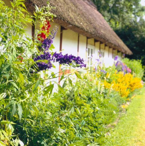 algunos-consejos-para-crear-un-jardin-18