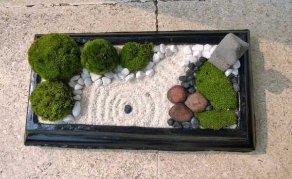 C mo hacer un jard n zen en miniatura for Como preparar un jardin en casa