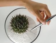 imagen Cómo hacer un jardín zen en miniatura