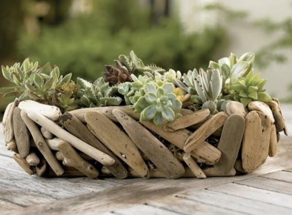 composiciones-de-plantas-y-madera-recuperada-del-mar-11