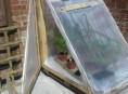imagen Cómo hacer un invernadero con un palet