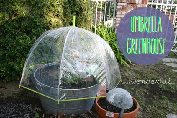 C mo hacer un mini invernadero con un paraguas for Como realizar un vivero
