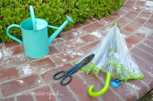 hacer-un-mini-invernadero-con-un-paraguas-02