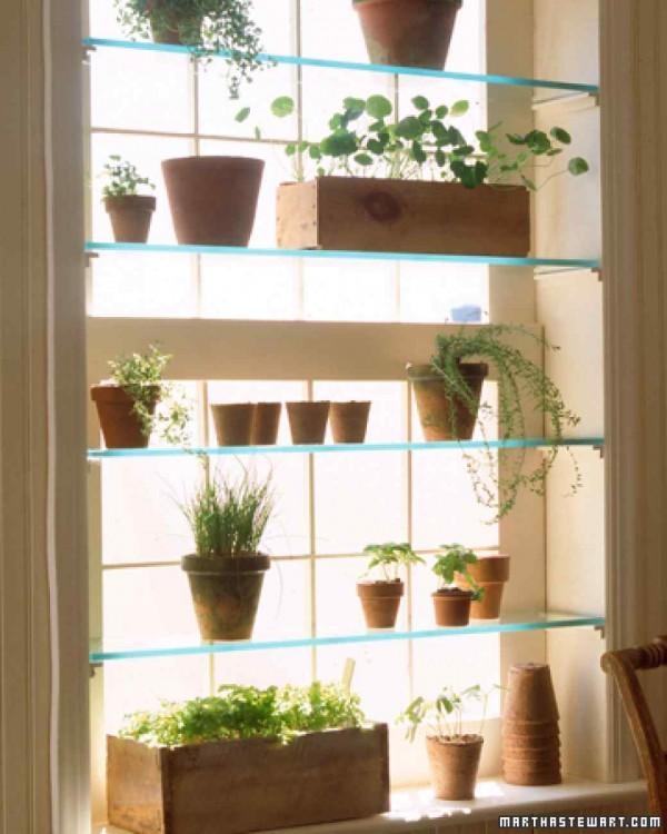instalar-un-invernadero-en-la-ventana-01