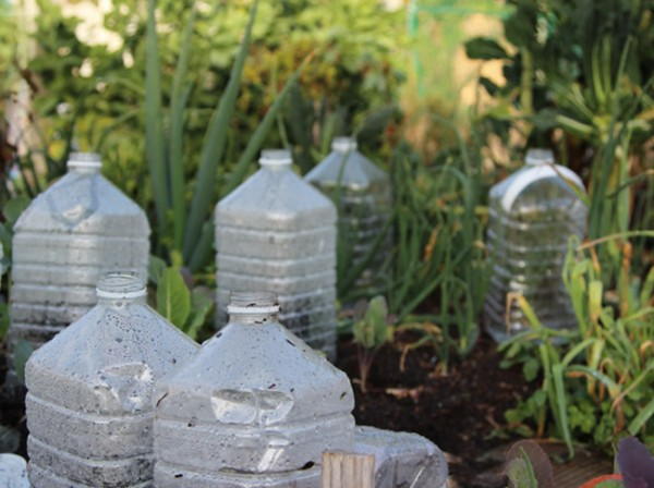 Mini invernaderos hechos con envases pl sticos for Como iniciar un vivero en casa