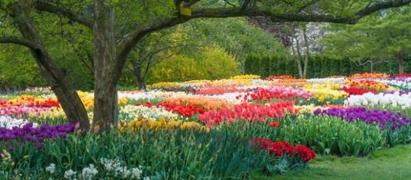 10-jardines-que-visitar-antes-de-morir-05