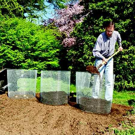 10-maneras-diferentes-de-cultivar-patatas-08