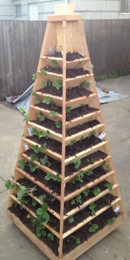como-construir-un-jardin-piramidal-01
