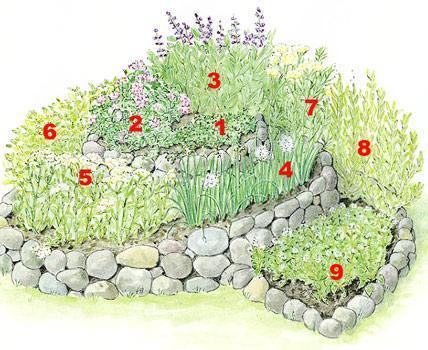 C mo crear un jard n de hierbas arom ticas en espiral - Jardin de aromaticas ...
