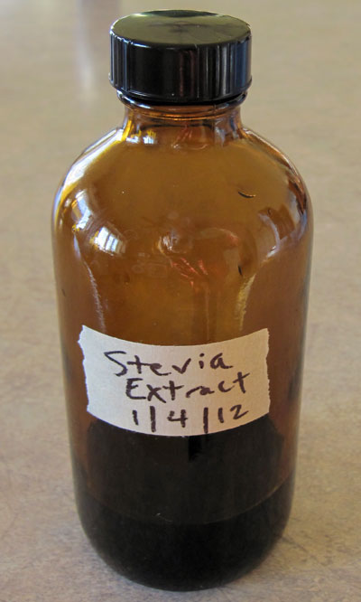 como-cultivar-la-stevia-y-preparar-su-extracto-09