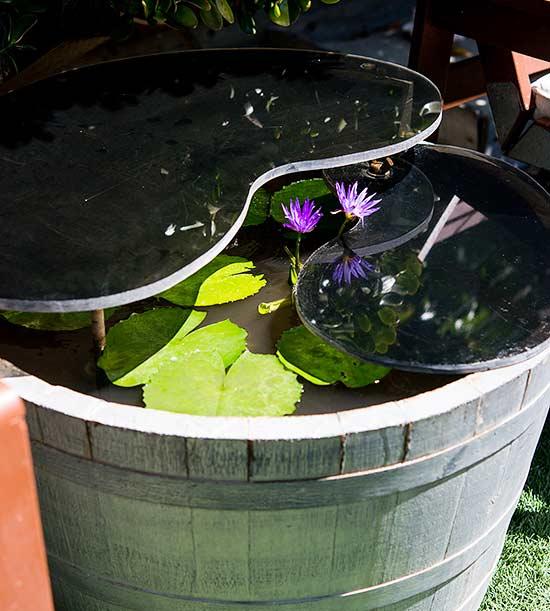 10-sorprendentes-plantas-para-cultivar-en-maceta-02