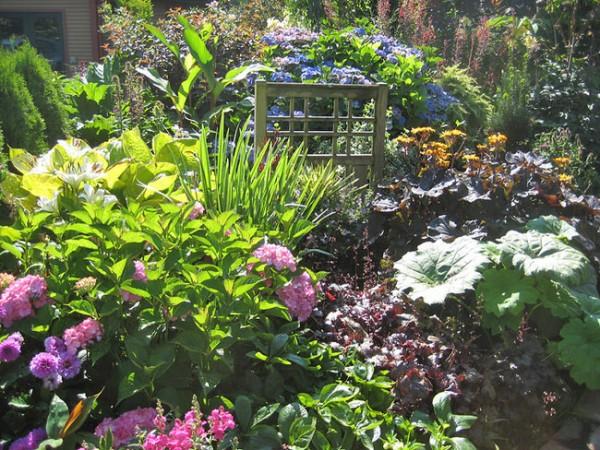 consejos-para-tener-un-jardin-exuberante-01