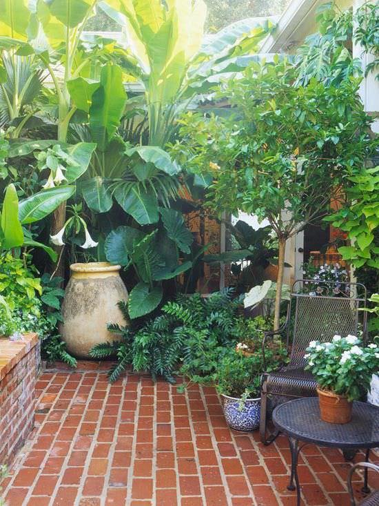 consejos-para-tener-un-jardin-exuberante-06