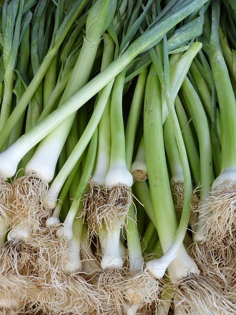 10-hortalizas-enanas-para-cultivar-en-maceta-09