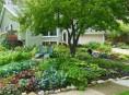 imagen Fertilizantes naturales para un jardín saludable