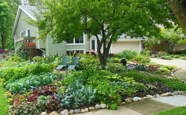 fertillizantes-naturales-para-un-jardin-saludable-01