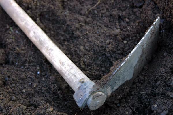 un-suelo-sano-para-un-jardin-sano-01