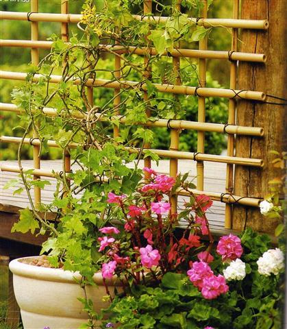 como-hacer-un-enrejado-de-bambu-01