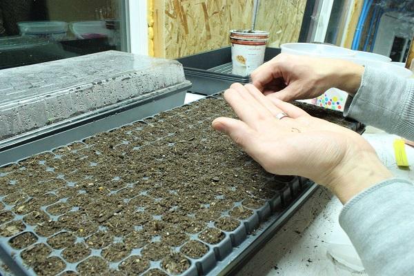 como-preparar-una-instalacion-para-cultivo-de-interior-06
