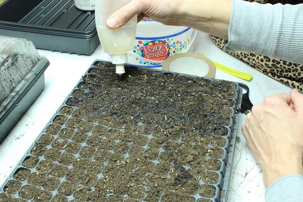 como-preparar-una-instalacion-para-cultivo-de-interior-08