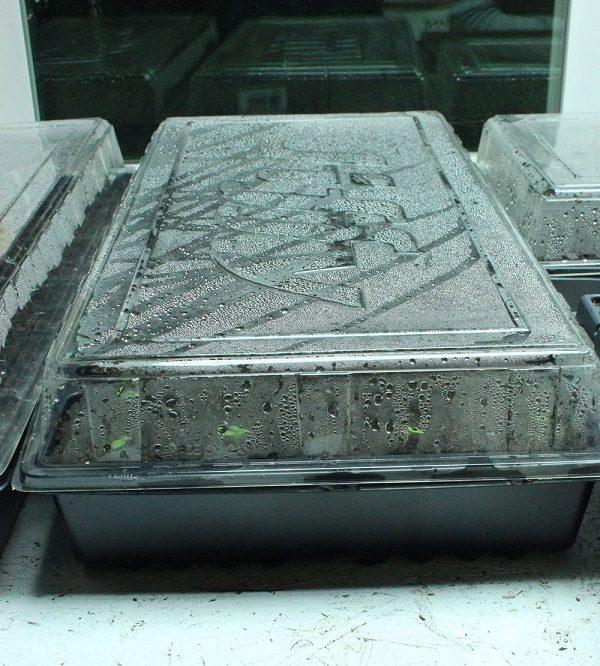 como-preparar-una-instalacion-para-cultivo-de-interior-09