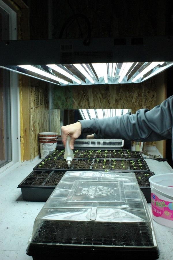 como-preparar-una-instalacion-para-cultivo-de-interior-10