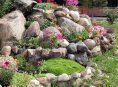 imagen Ideas y consejos para crear jardines de rocas