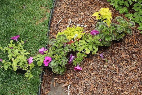 paso-a-paso-para-montar-una-jardinera-en-la-ventana-05